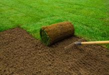 jak zakładać trawnik z rolki